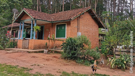 A house in Lituanika