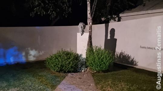 Bernardas Brazdžionis courtyard