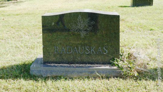 Henrikas Radauskas's grave