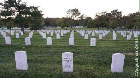 Vladislovo Sabaliausko kapas vienodų Arlingtono kapų eilėse