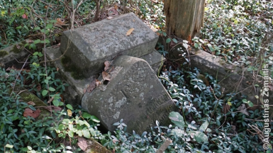 Vandalised grave at the Ledford Lithuanian cemetery