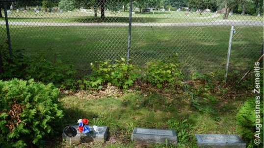 Some of the graves at the Liberty cemetery that are facing the fence between the cemeteries. The Ss. Peter and Paul cemetery is beyond the fence