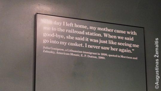 Tikėtina, Lietuvos žydės citata Elio salos muziejuje