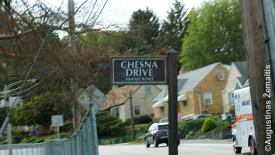 Chesna Drive